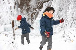 대둔산 수락계곡 얼음축제,충청남도 논산시,지역축제,축제정보