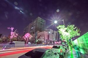 금천하모니 벚꽃축제,서울특별시 금천구,지역축제,축제정보